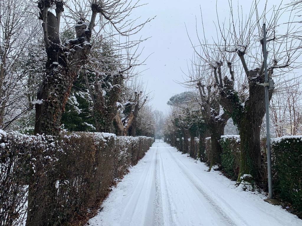 neve varese 30 gennaio 2019