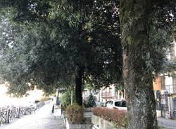 Viale De Angeli a Laveno Mombello, lungolago