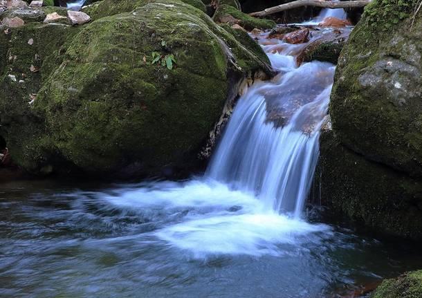 Brusimpiano, torrente Trallo - Foto di Fil Impie