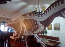 dinosauro cartonato