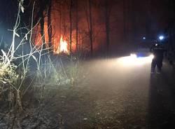 Incendio nei boschi di Vergiate