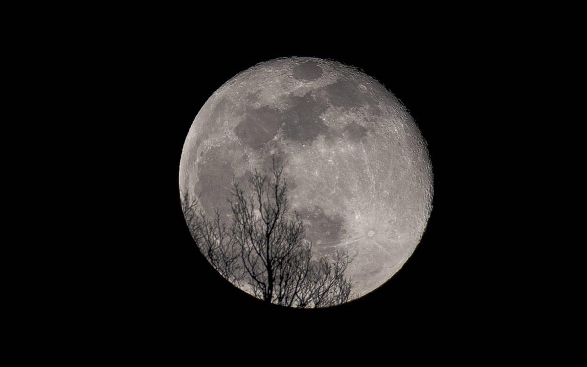Luna - foto di Marco Rossini