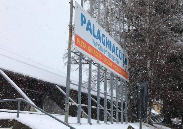palaghiaccio varese palalbani nevicata 2019