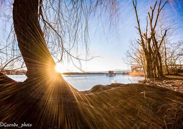 Sole - foto di Guendalina Marzetta