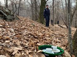 spaccio nei boschi carabinieri luino