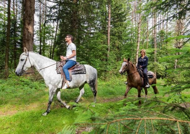 equitazione sito di incontri