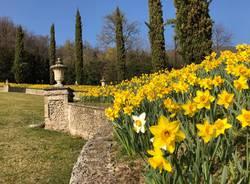 In tanti a Villa della Porta Bozzolo per le giornate Fai di Primavera