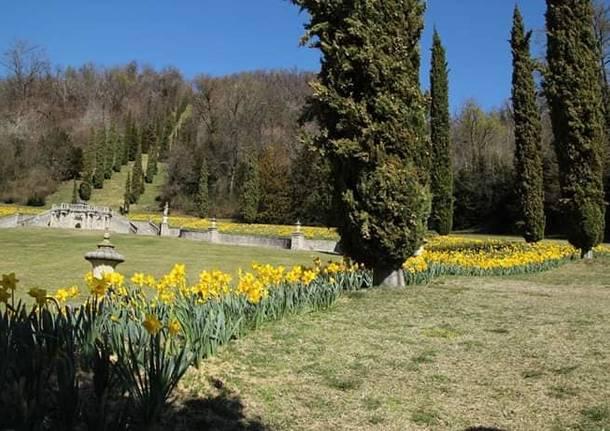 Giornate Fai di Primavera, Villa Della Porta Bozzolo presa d'assalto
