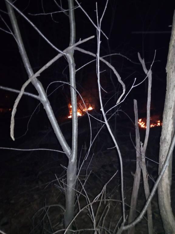 Incendio boschivo bolladello  - marzo 2019