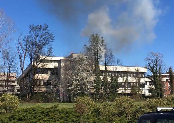 incendio marzo 2019