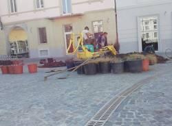 piazza vittorio emanuele busto arsizio lavori aiuole