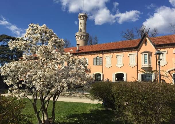 primavera a villa Mirabello Fiorella Pozzi