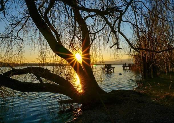Raggi di sole - foto di Elisa Pollastri