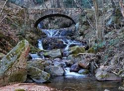 Rio  Cavallizza Cuasso - foto di Marino Foina