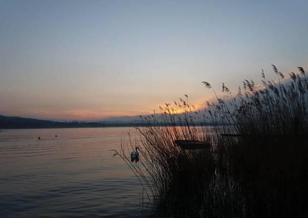 Varese, Schiranna - foto di Augusta Sartori
