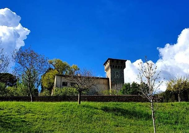 Induno Olona - foto di Clara Comolli