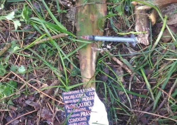 siringhe droga spaccio nei boschi
