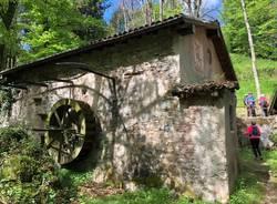 Via Francisca Lavena-Sacro Monte