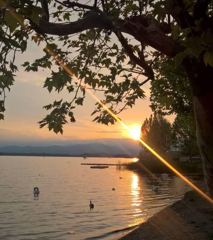 Un tramonto alla Schiranna