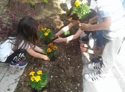 giardino colorato scuola d'infanzia Cavaria con Premezzo