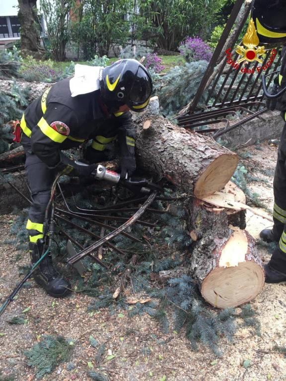 Raffiche a 100 all'ora, i danni del vento nel Varesotto (domenica 5 maggio)