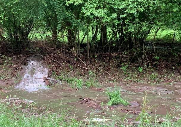 Un torrente sulla strada della Rasa
