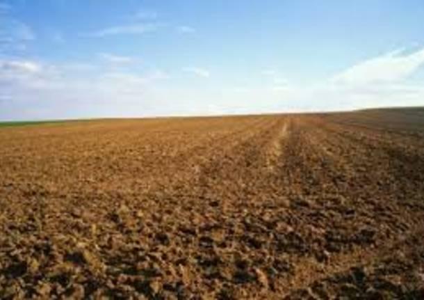 Commerciale per gli agricoltori solo incontri sito Web