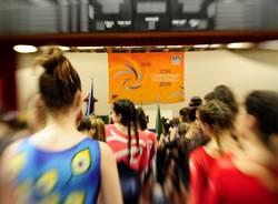 campionato nazionale csi ginnastica artistica