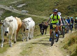 In bici in Valsesia