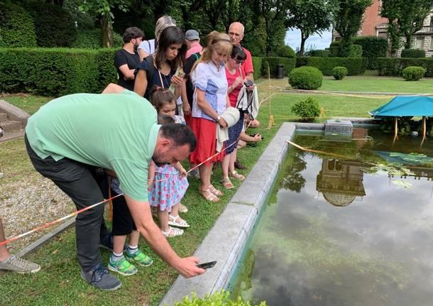 Lezione sugli anfibi a Villa Toeplitz