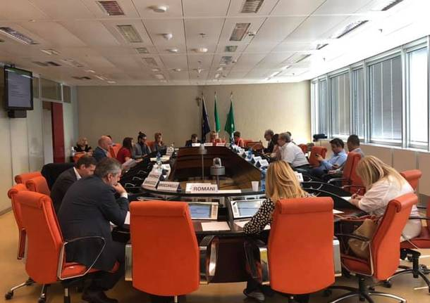 audizione in commissione sanità regione lombardia
