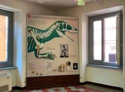Besano - Varese 4 U Archeo - museo dei fossili