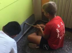 Genitori e ragazzi ridipingono la scuola media