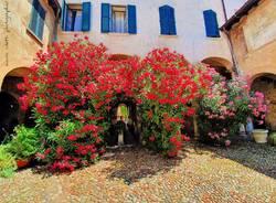 Il Broletto - Varese - foto di marco Colucci