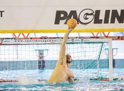 pallanuoto banco bpm sport management busto 2018 2019