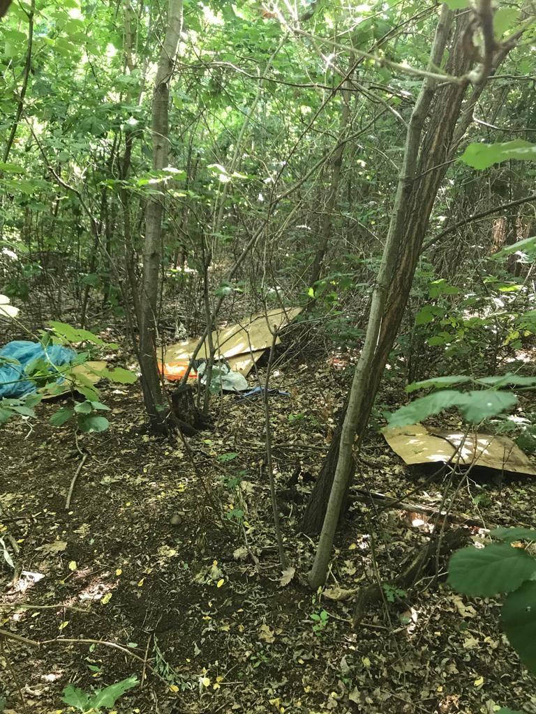 pulizia bosco del rugareto rifiuti spaccio elisabetta galli