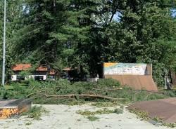 Maccagno il giorno dopo, parco devastato