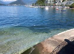 lago maggiore livello