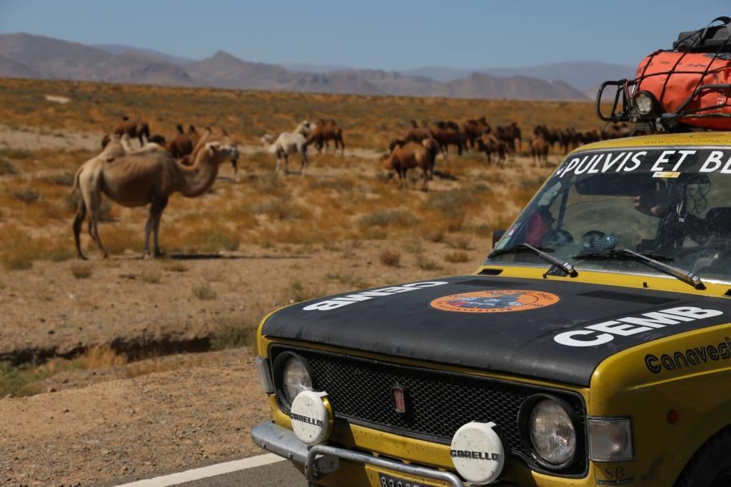 Pulvis et benzin Mongolia