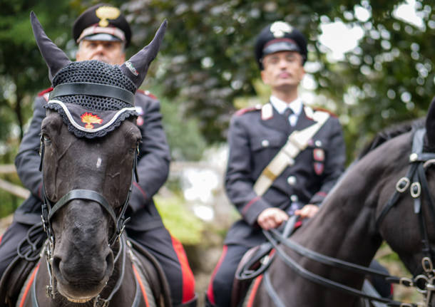 carabinieri cavallo