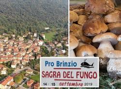 La Sagra del Fungo di Brinzio fa trentasette: benvenuto autunno!