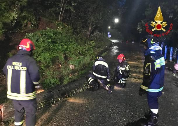 maltempo vigili del fuoco provincia di varese