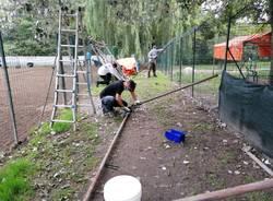 Volontariato al canile di Varese