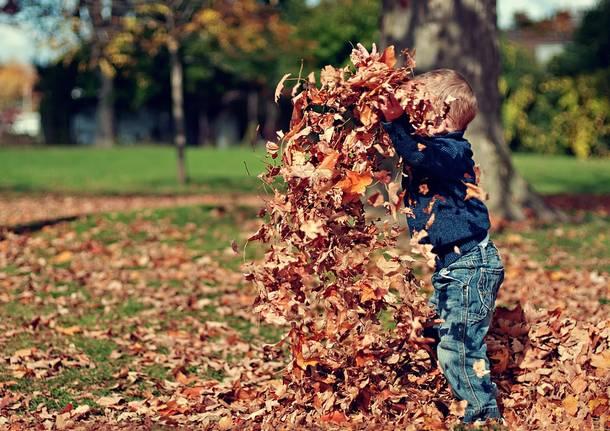 bambini gioco autunno