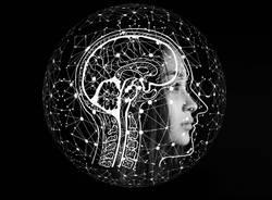 cervello neuroscienze mente persona