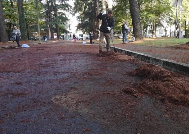 pulizia parco reddito di cittadinanza