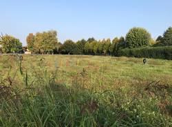 """Il comune di Cislago: """"Basta cani nei parchi pubblici"""""""
