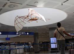 L'ornitottero di Leonardo da Vinci a Malpensa