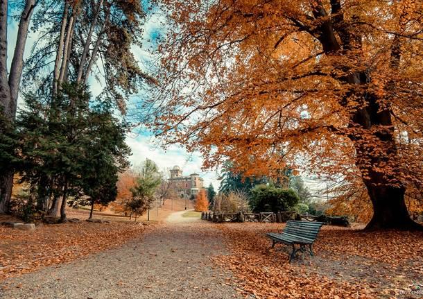 autunno a Villa Toeplitz - foto di Davide Morello