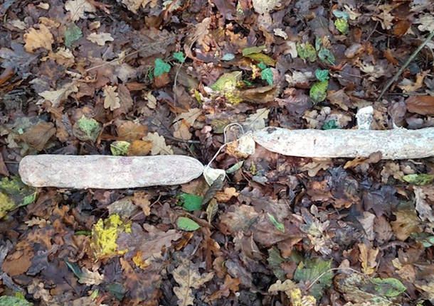 Salami gettati nel bosco a Caravate